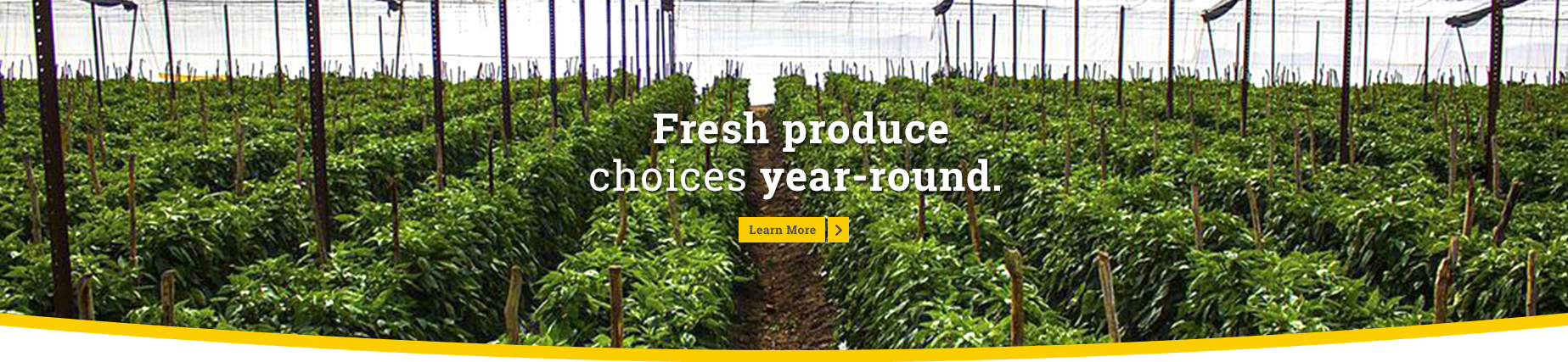 Fresh produce choices year round.